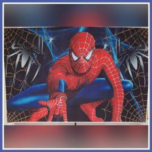 spiderman achterwand